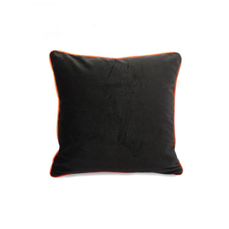 Back of chevron print cushion cover